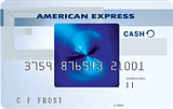 The Blue Cash Everyday Card